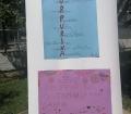 A l'Escola Pérez Sala hem estudiat la purpurina! I el que hem descobert no ens ha agradat!